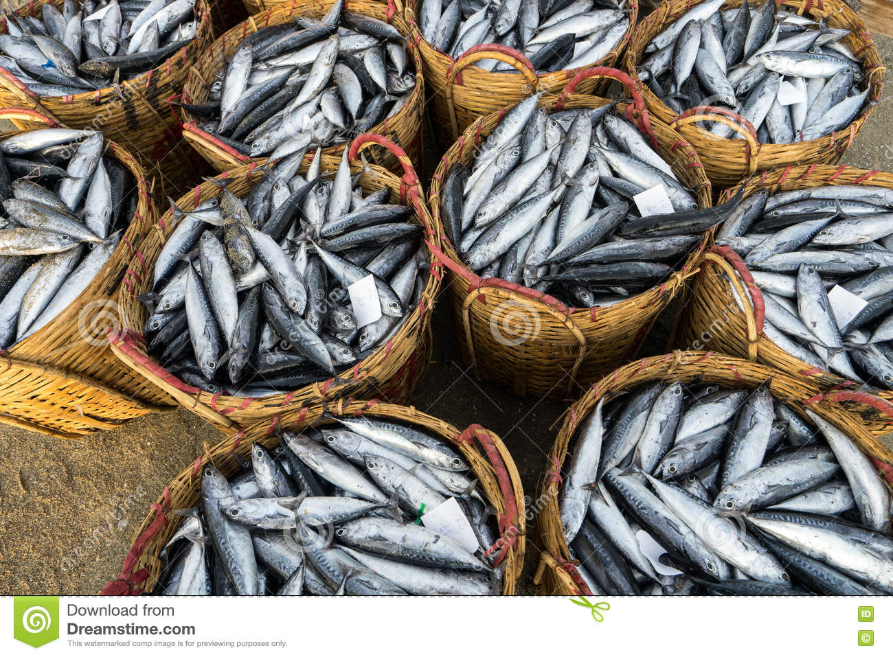 long hai vietnam 03 july 2016 fresh fishes on bamboo basket in