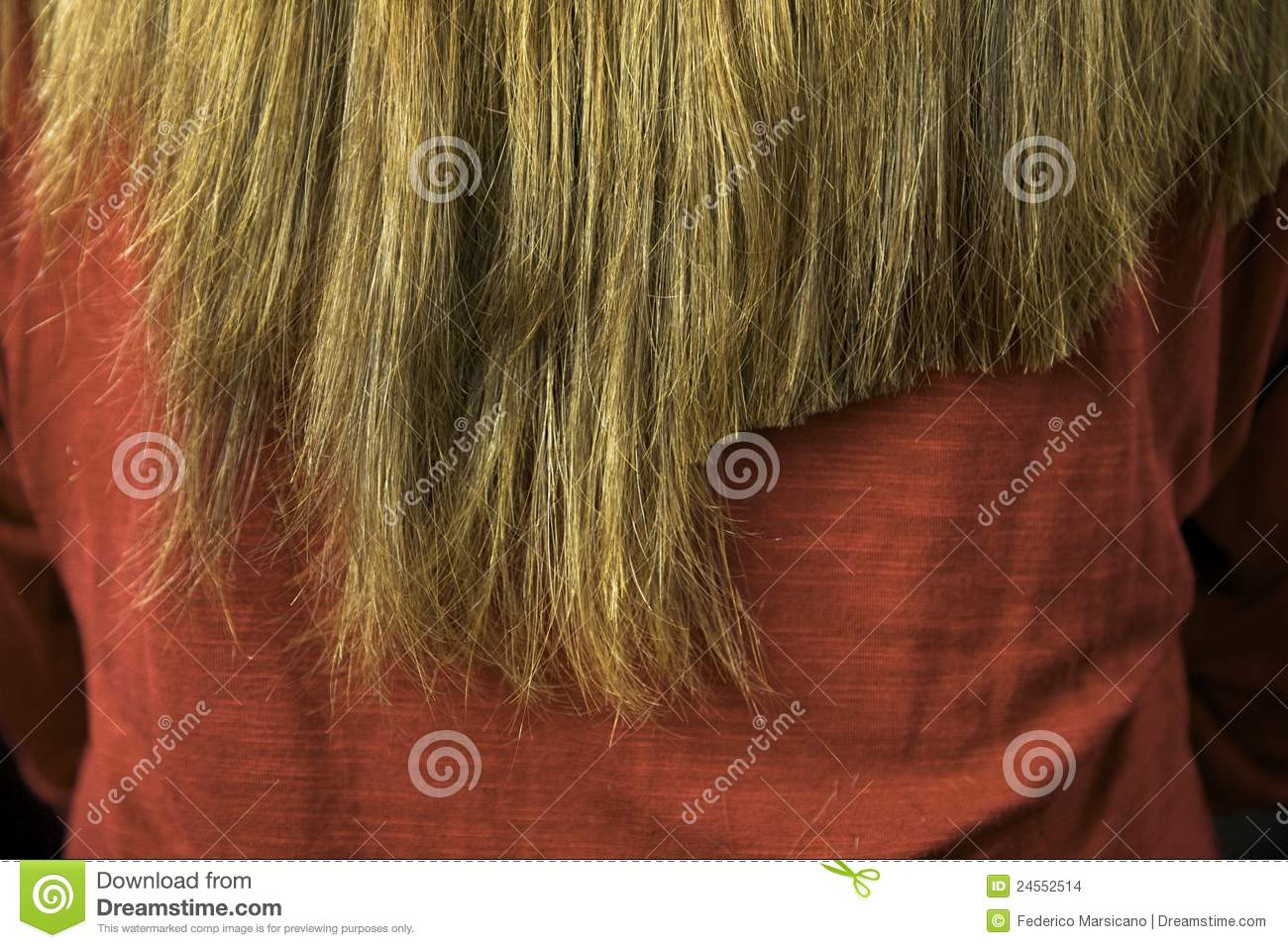 Long Hair After Some Cutting Close Up Stock Images Image