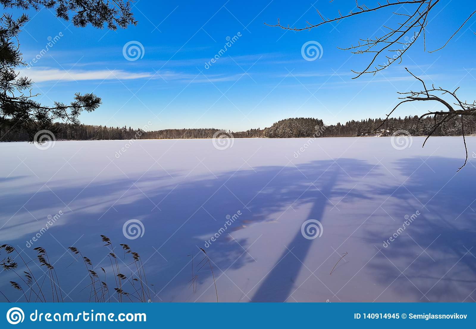 Long shadows on the lake. Winter landscape