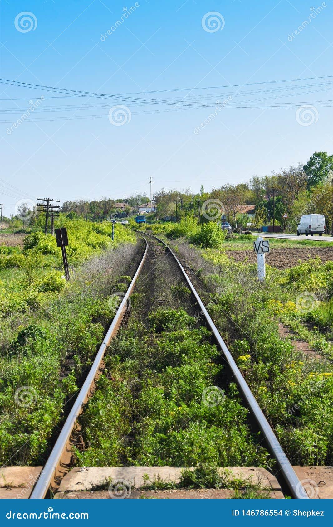 Long straight rails with vegetation
