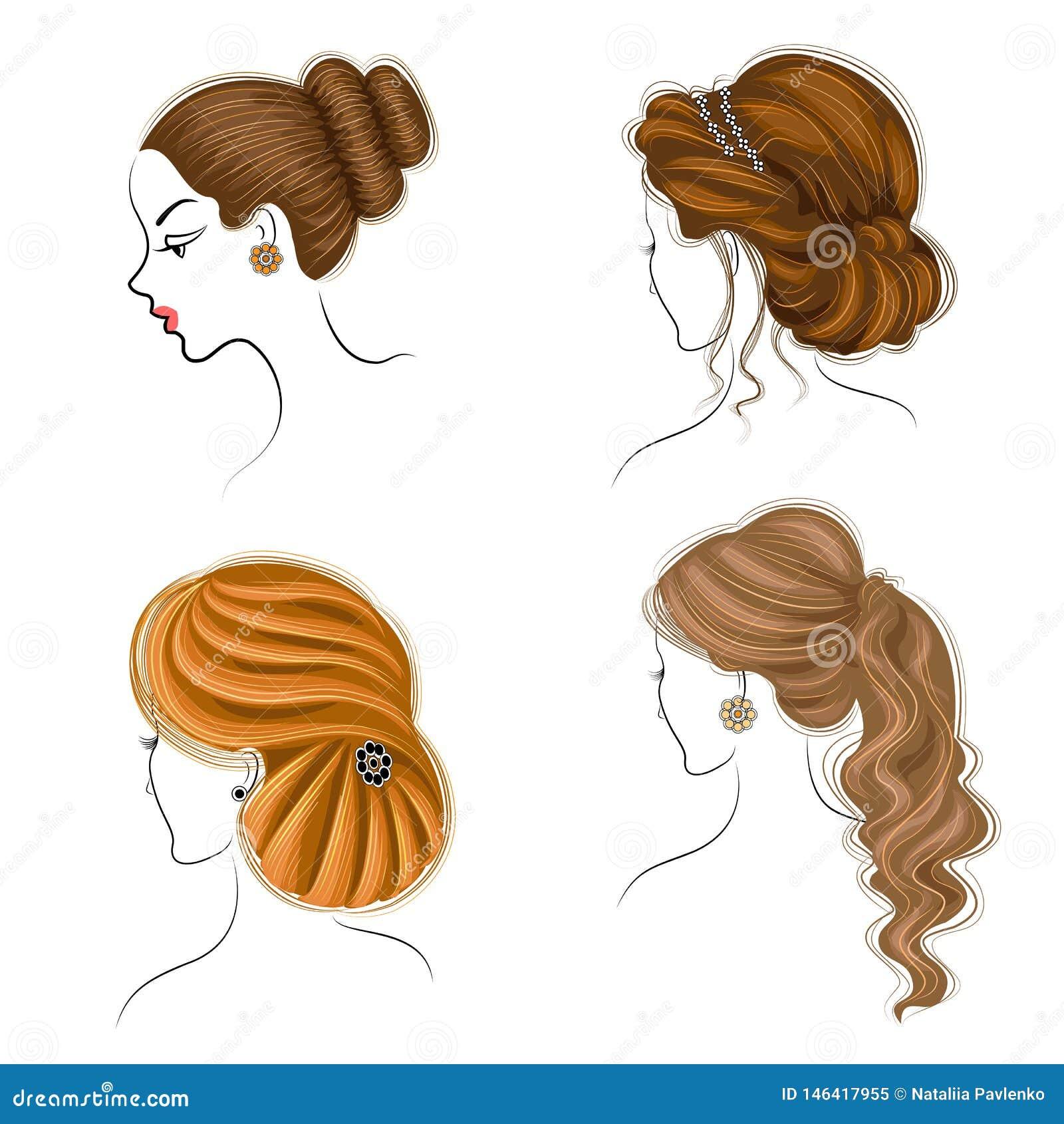 Long tresse les cheveux bruns cr?atifs, d isolement sur le fond blanc Coiffures d une femme Dessin anim?