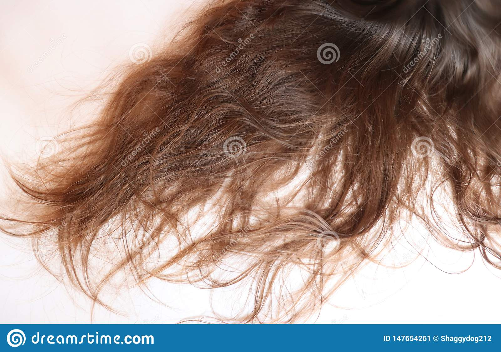 Long wavy brown hair on a teenage girl