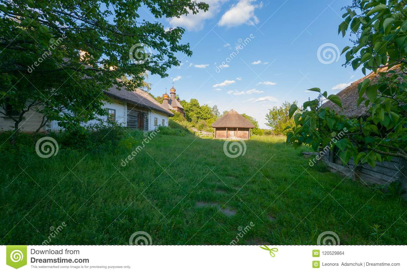 Lawn grass Ukraine: a selection of sites