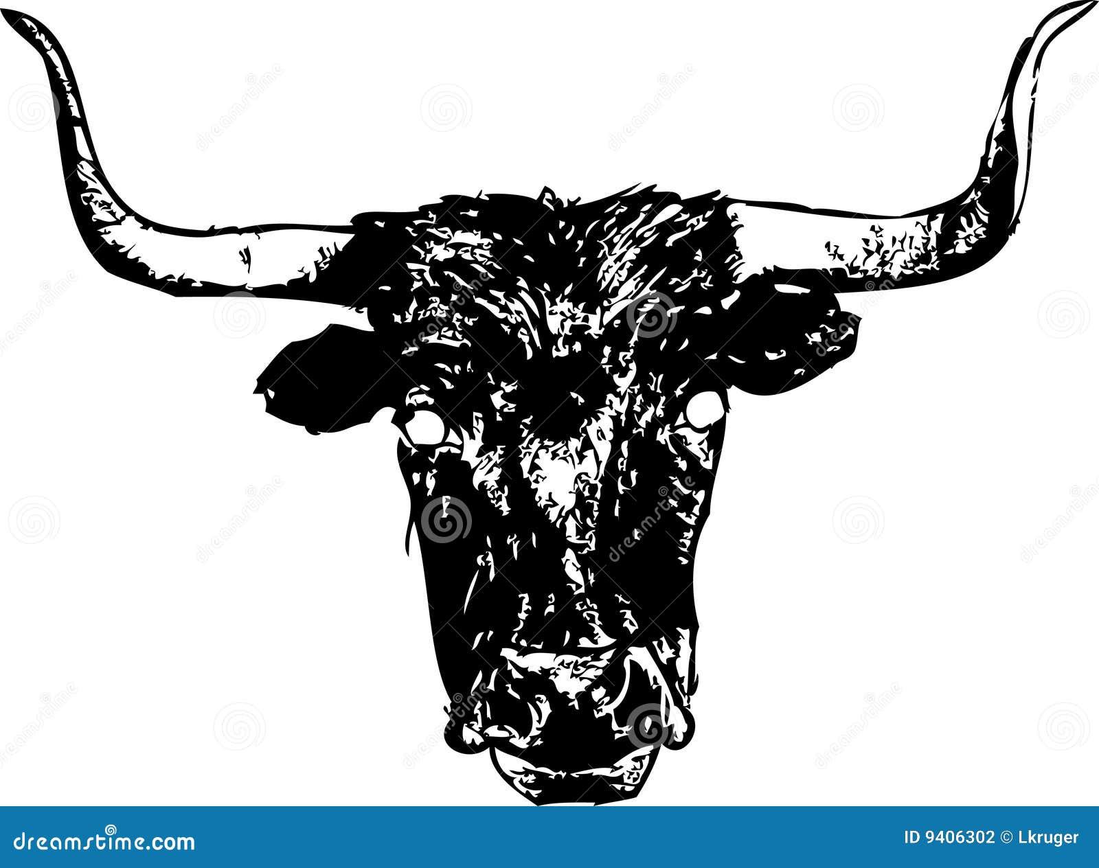 longhorn steer stock vector image of bull white looking
