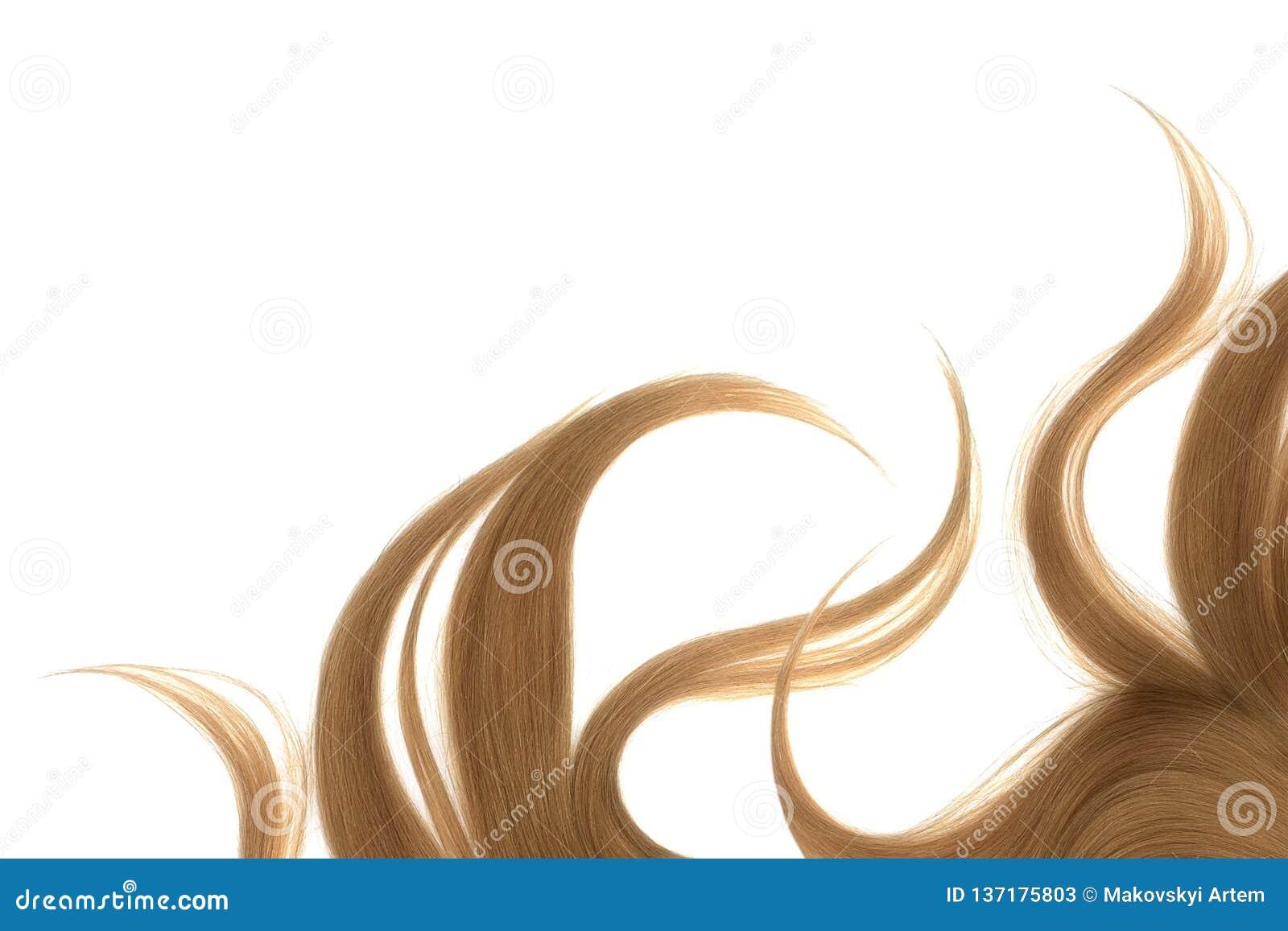 Longs cheveux bruns en désordre, d isolement sur le fond blanc