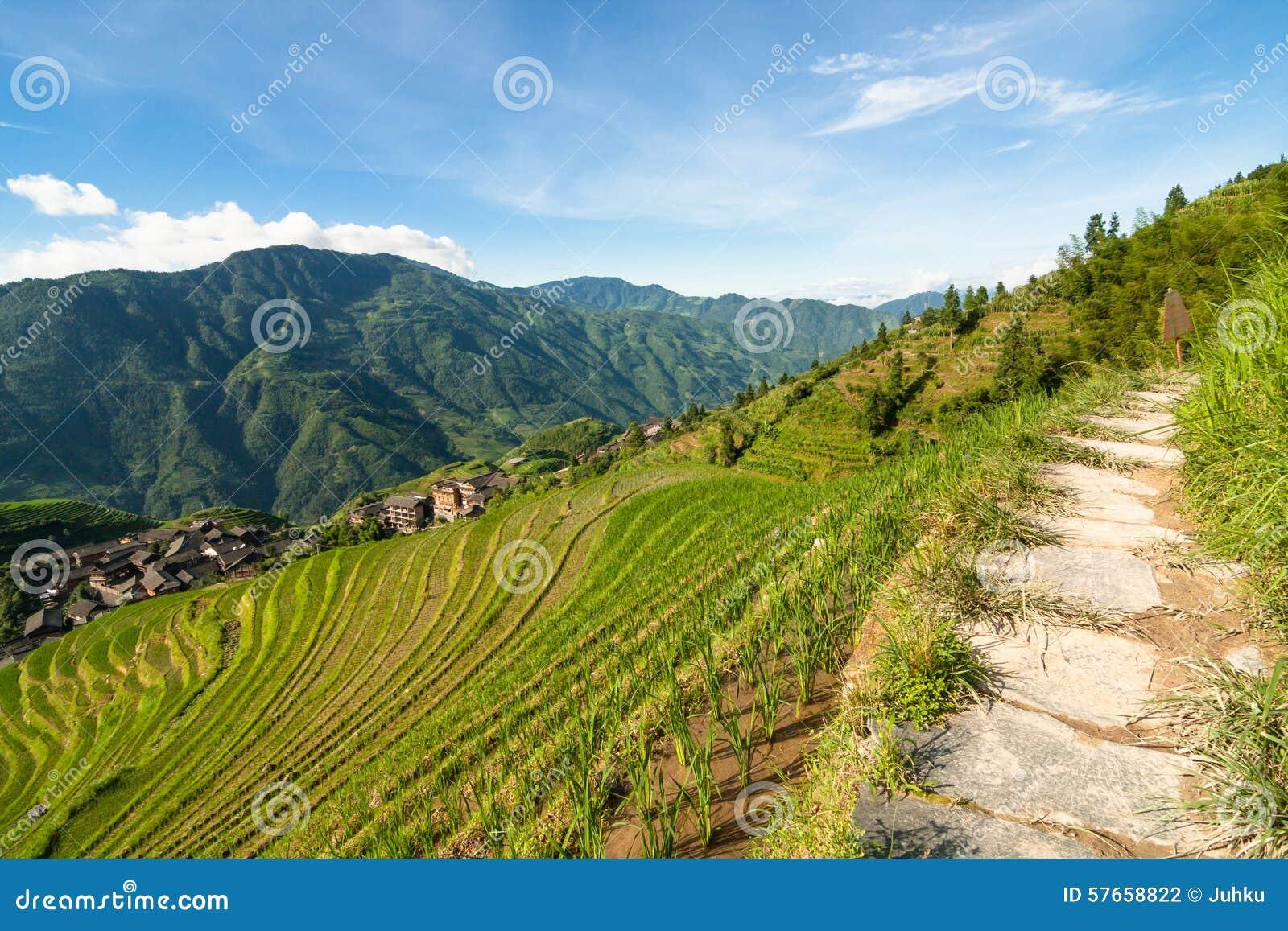 Longsheng ryż tarasuje Guilin porcelany krajobraz
