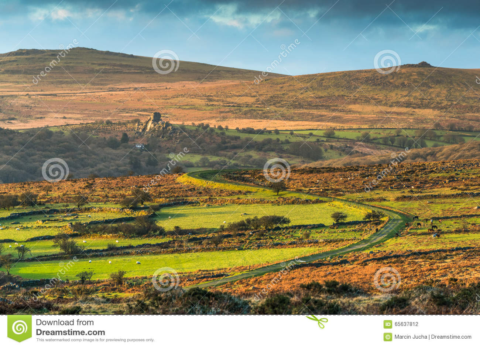 Longue route en collines au parc de Dartmoor, Devon, R-U