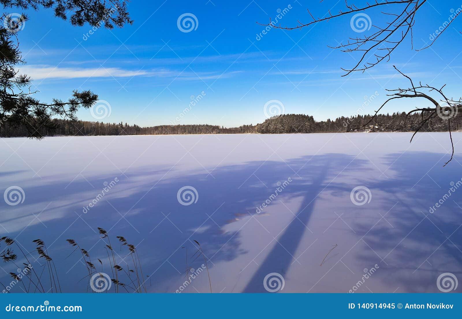 Longues ombres sur le lac Horizontal de l hiver