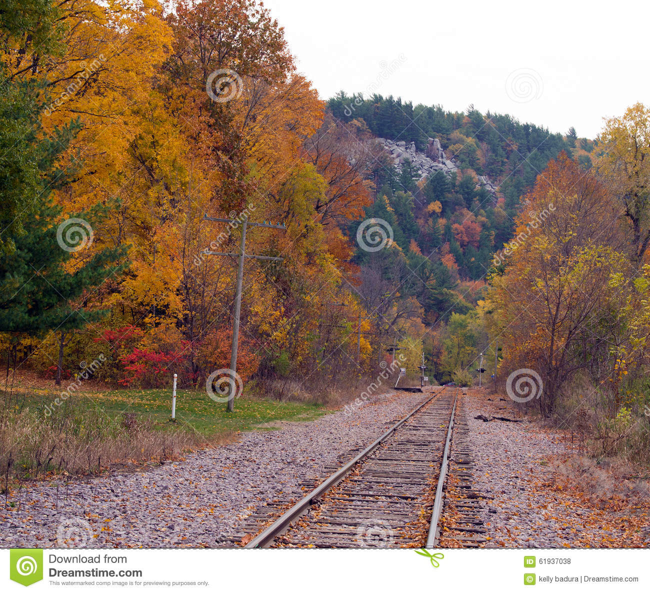 Looking down the train tracks in fall