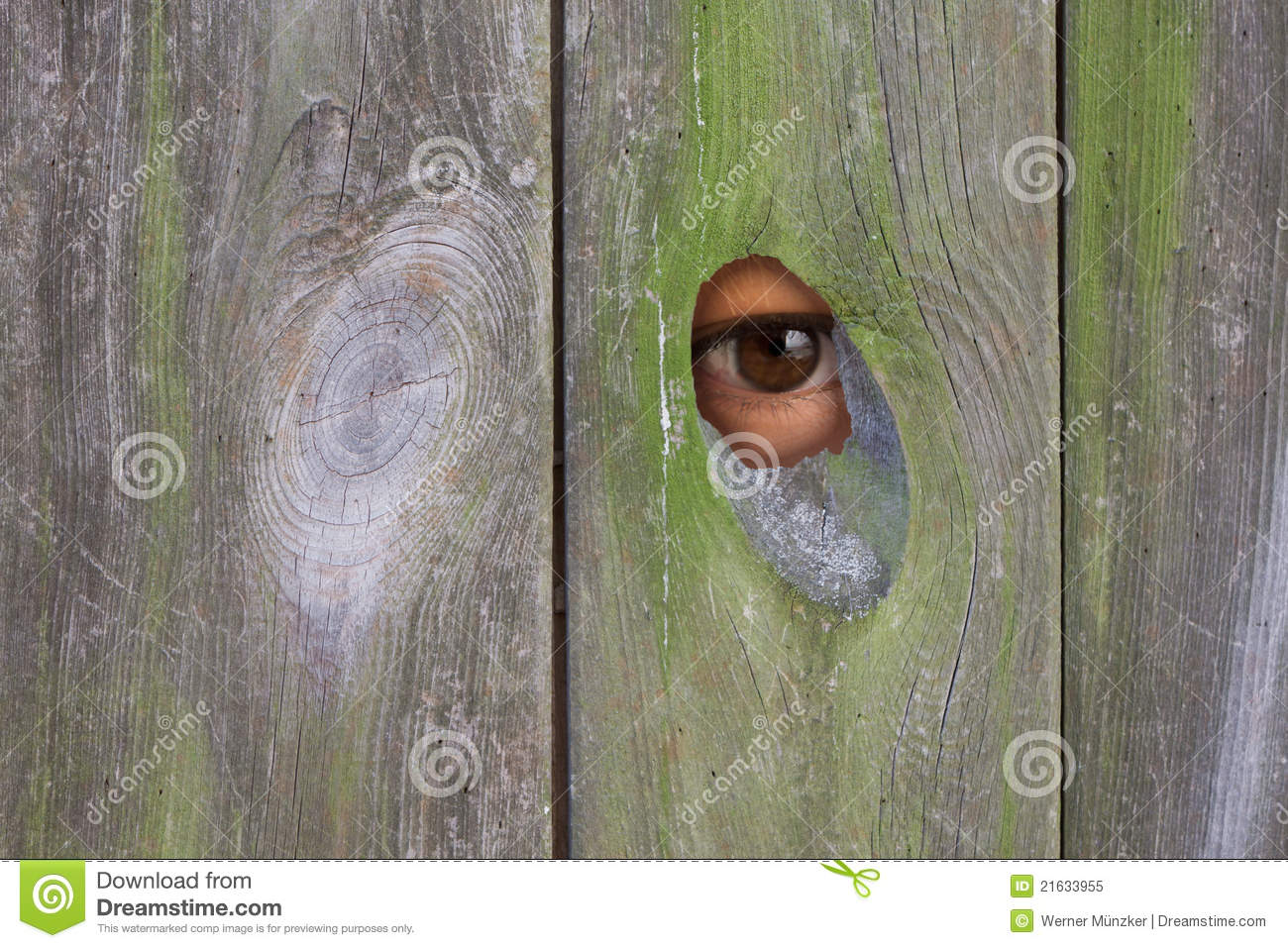 Looking Through A Hole Stock Image Image Of Voyeurism