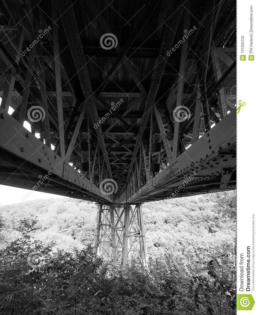 Looking underneath the Victorian wrought iron Meldon Viaduct, disused railway line and part of the Granite Way, Dartmoor
