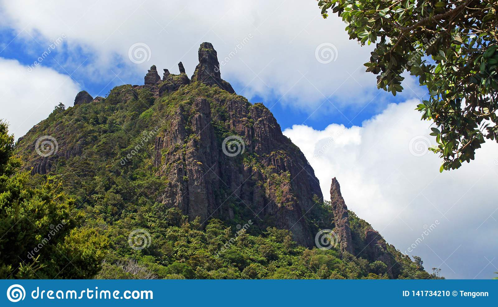 Looking up to the top of Mt Manaia