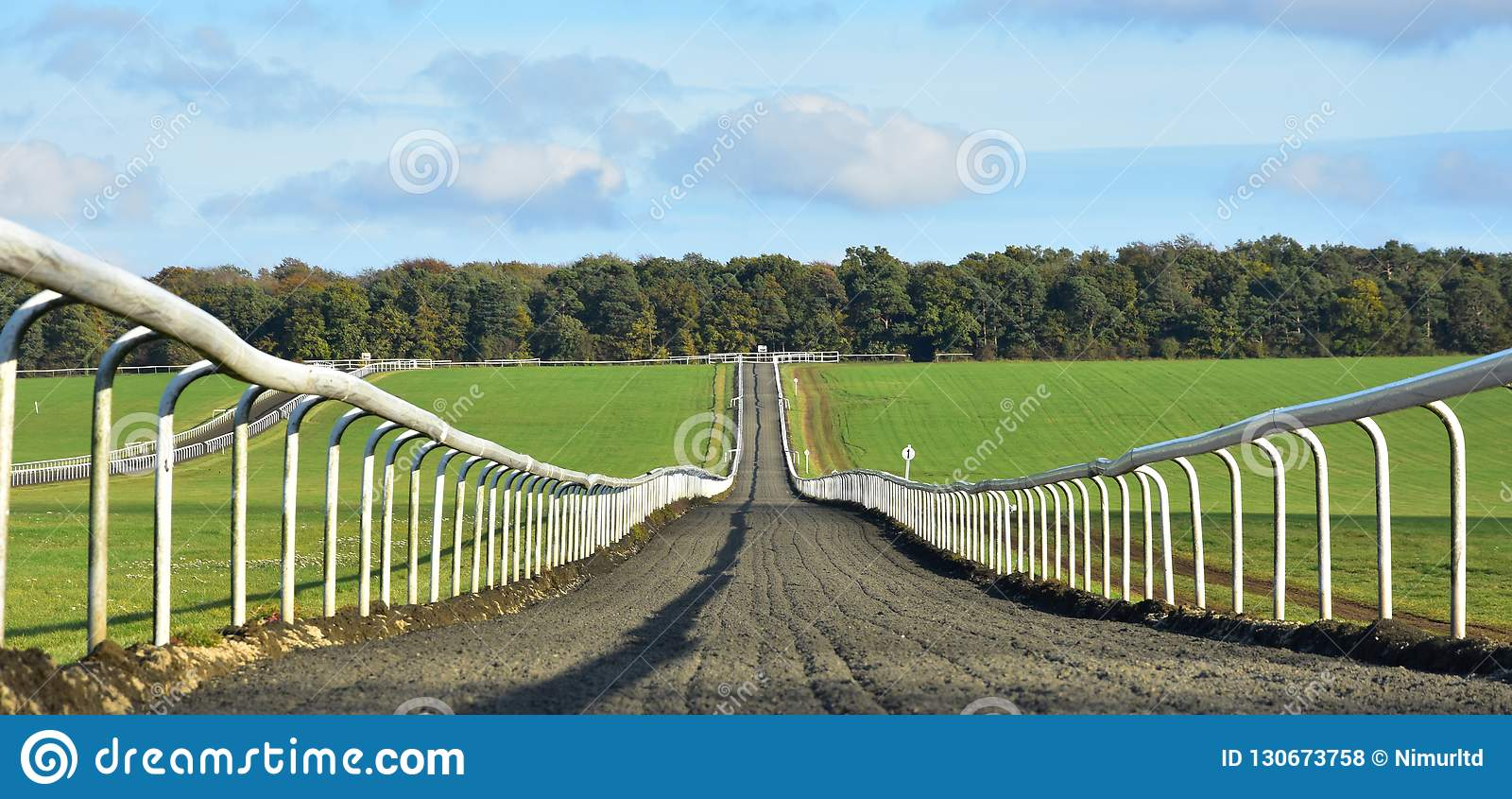 Looking up the training gallops on Newmarket Heath, Suffolk, UK