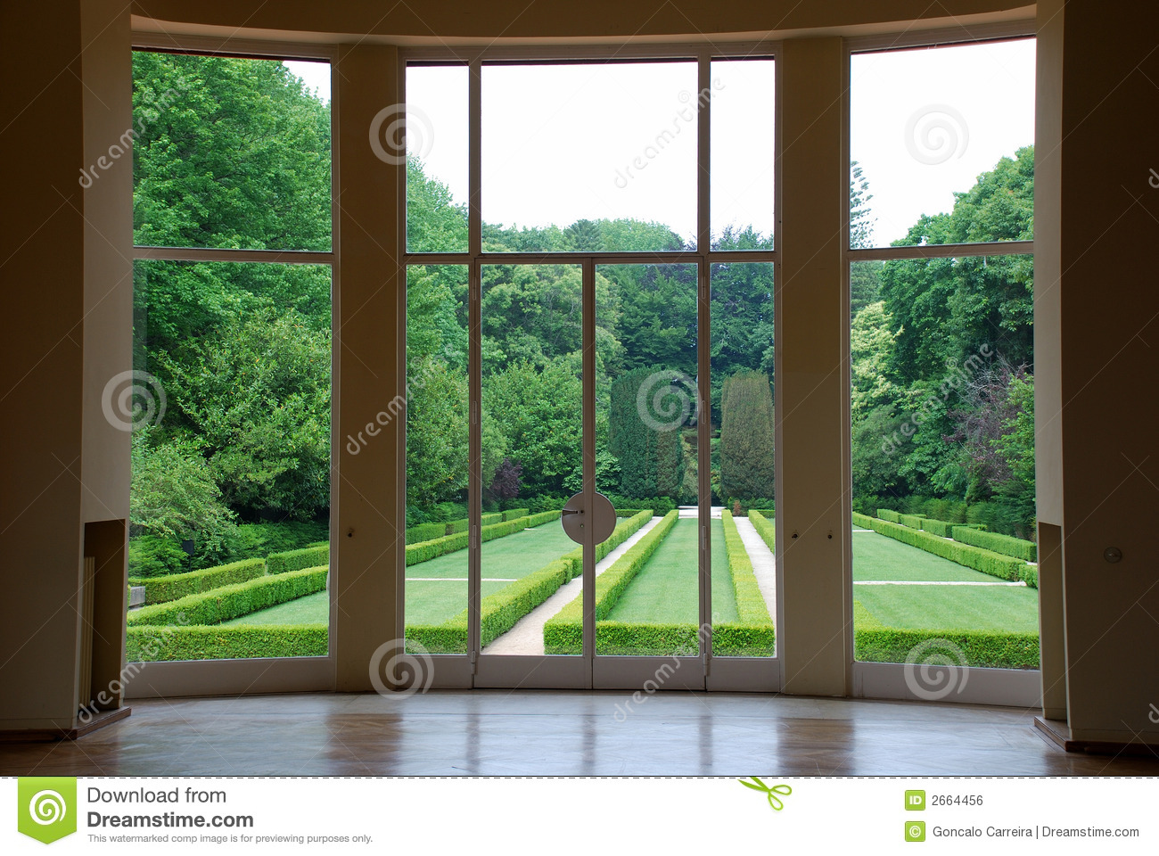 Looking Through Window Stock Photo Image Of Glass Plants