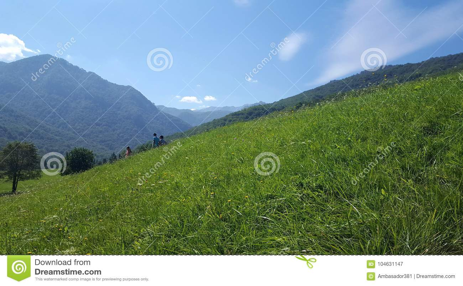 Download Lopend Op Heldere, Zonnige Dag Op Het Nationale Park Van Sutjeska Redactionele Fotografie - Afbeelding bestaande uit openlucht, park: 104631147