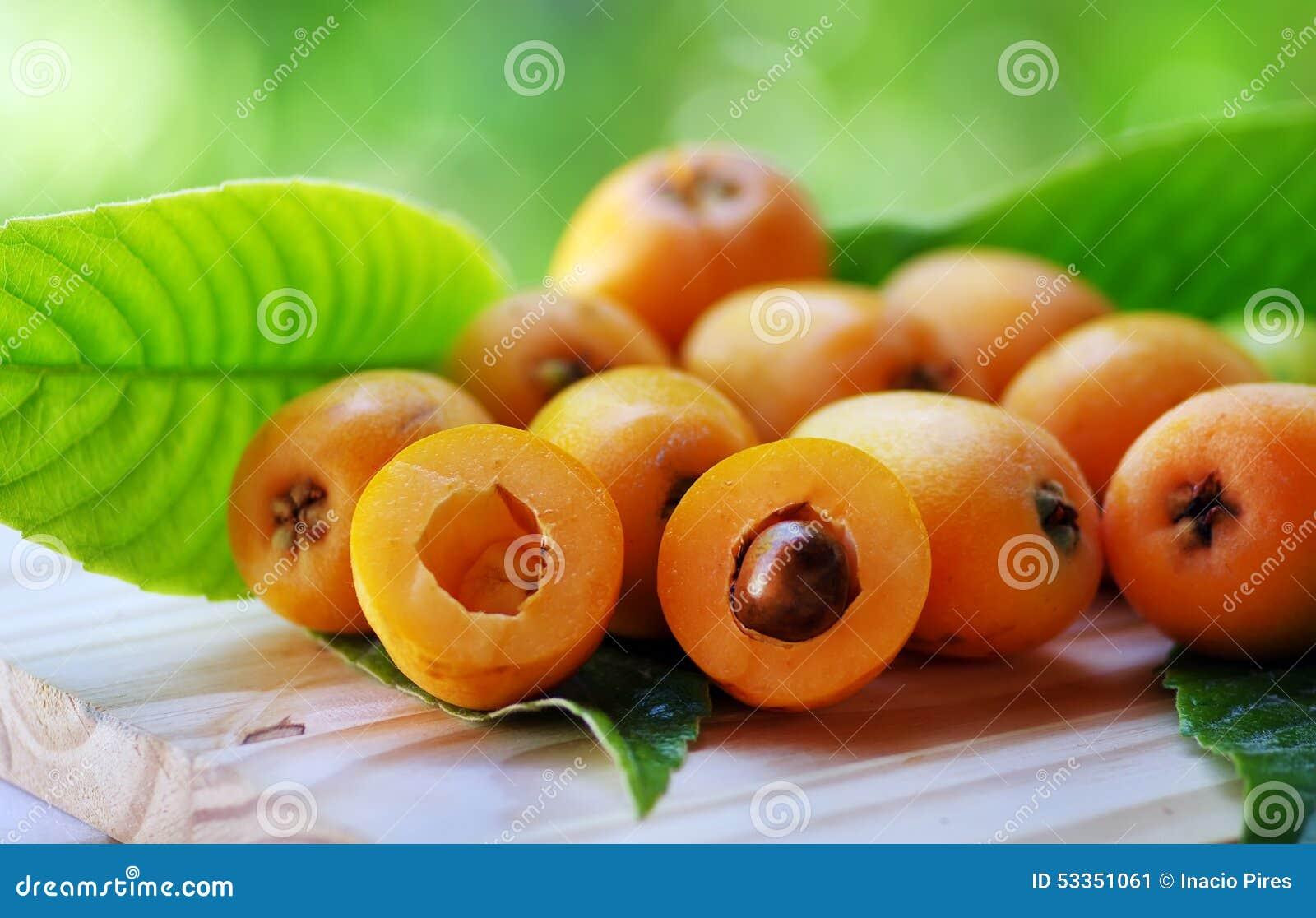 Loquat Medlar fruit i
