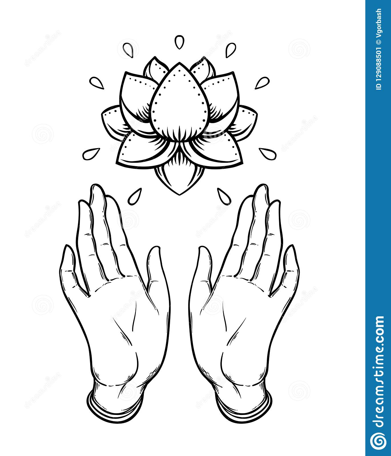 Lord Buddha's Open Hands Holding Lotus Flower. Isolated ...