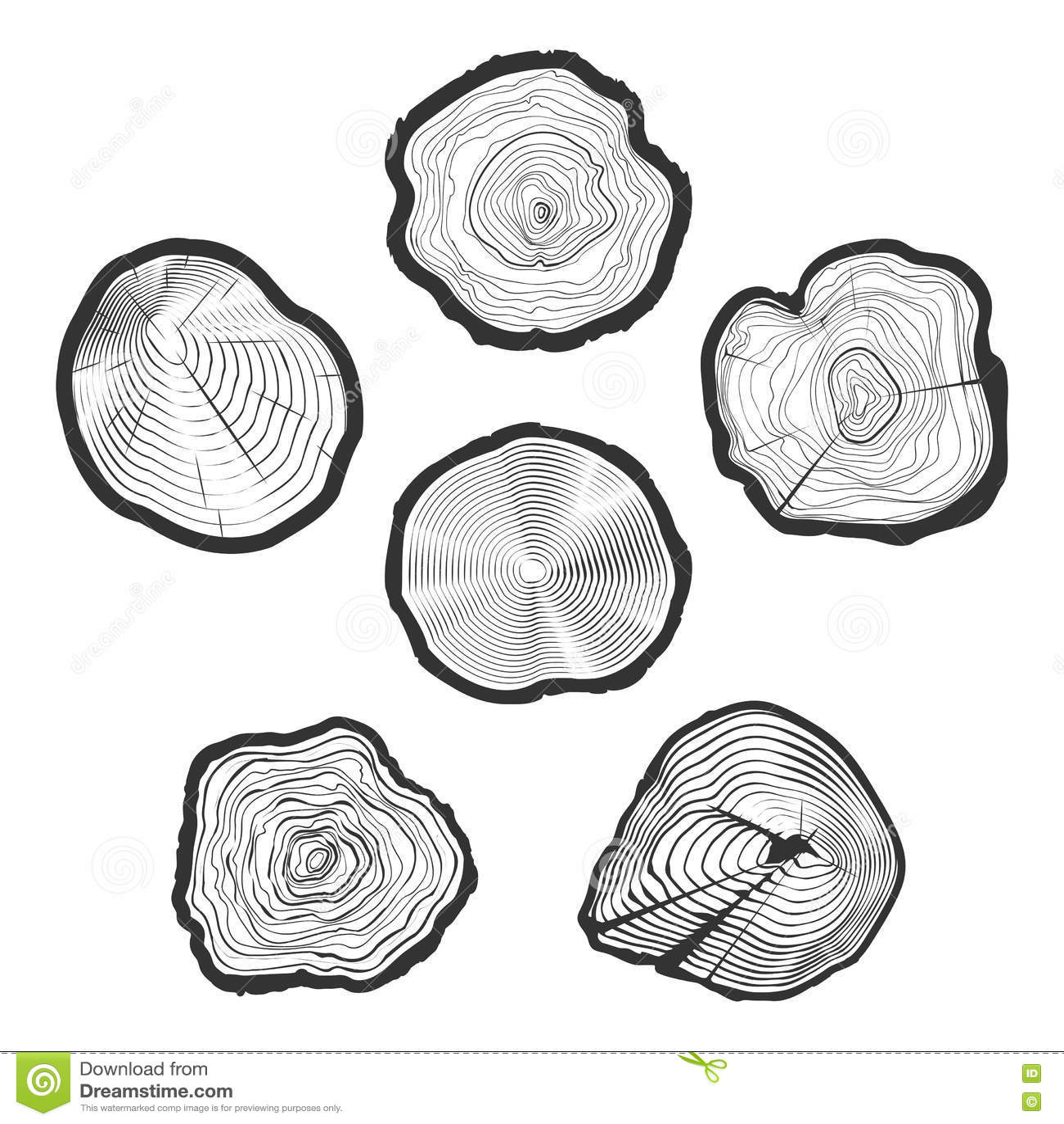 Los Árbol-anillos vector el sistema