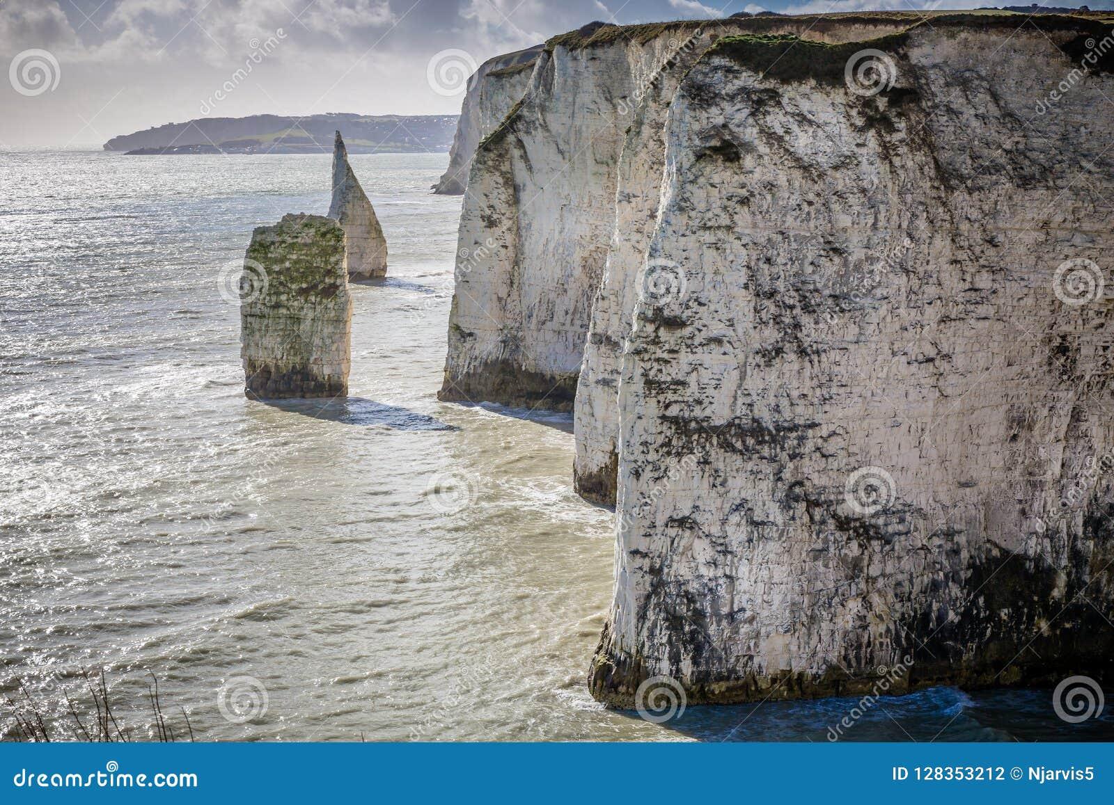 Los acantilados de tiza costeros acercan a viejo Harry Rocks, Swanage, Dorset, Reino Unido