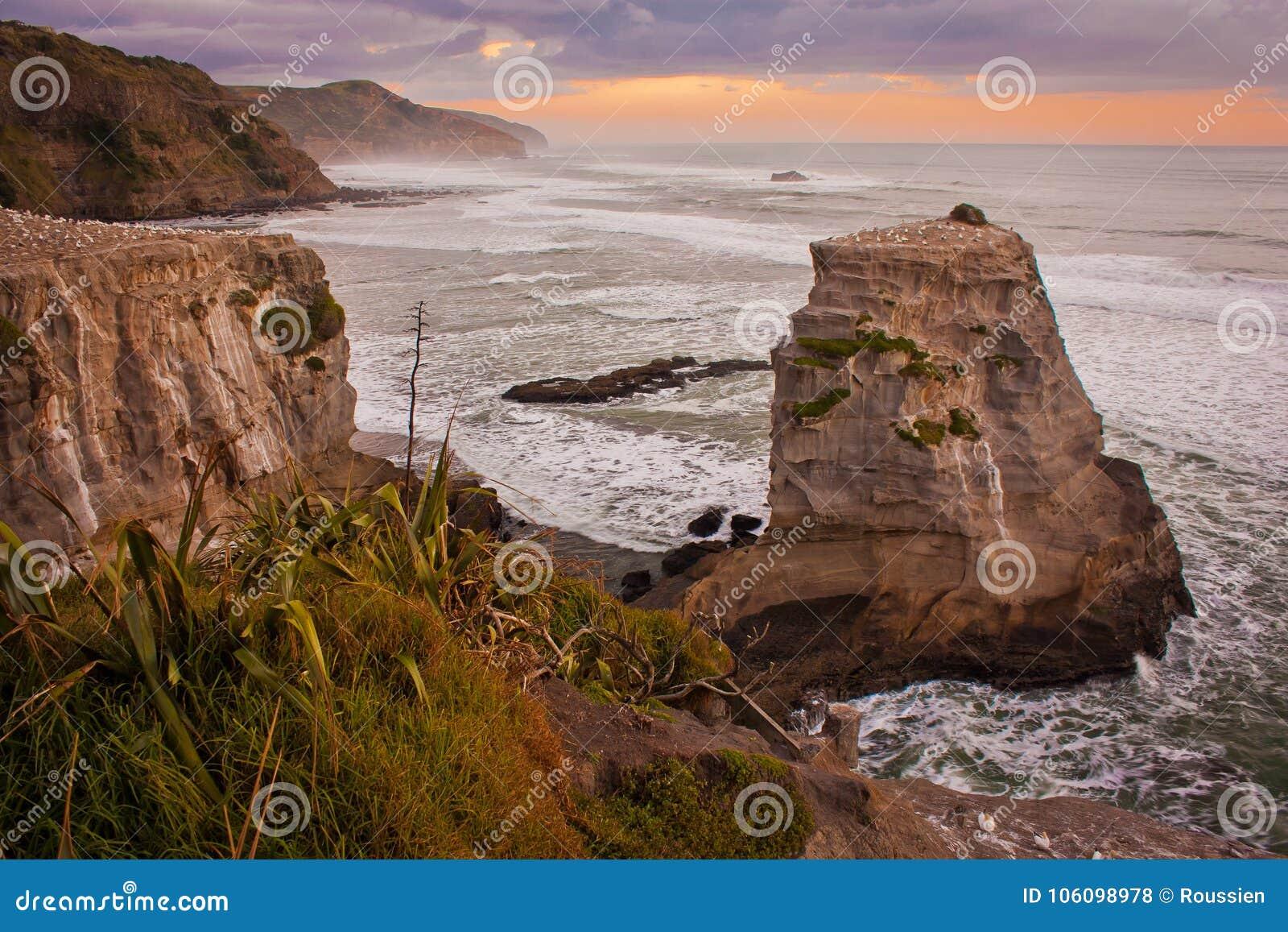 Los acantilados rocosos en Muriwai varan, cerca de Auckland, Nueva Zelanda