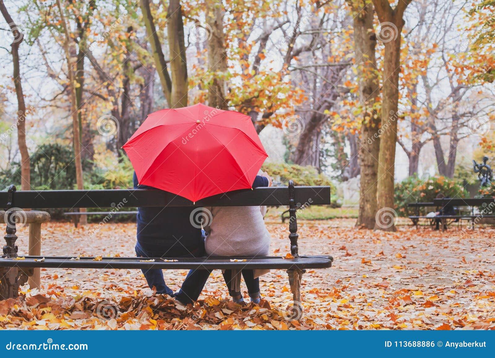 Los ancianos retiraron los pares que se sentaban juntos en el banco en el parque del otoño, concepto del amor