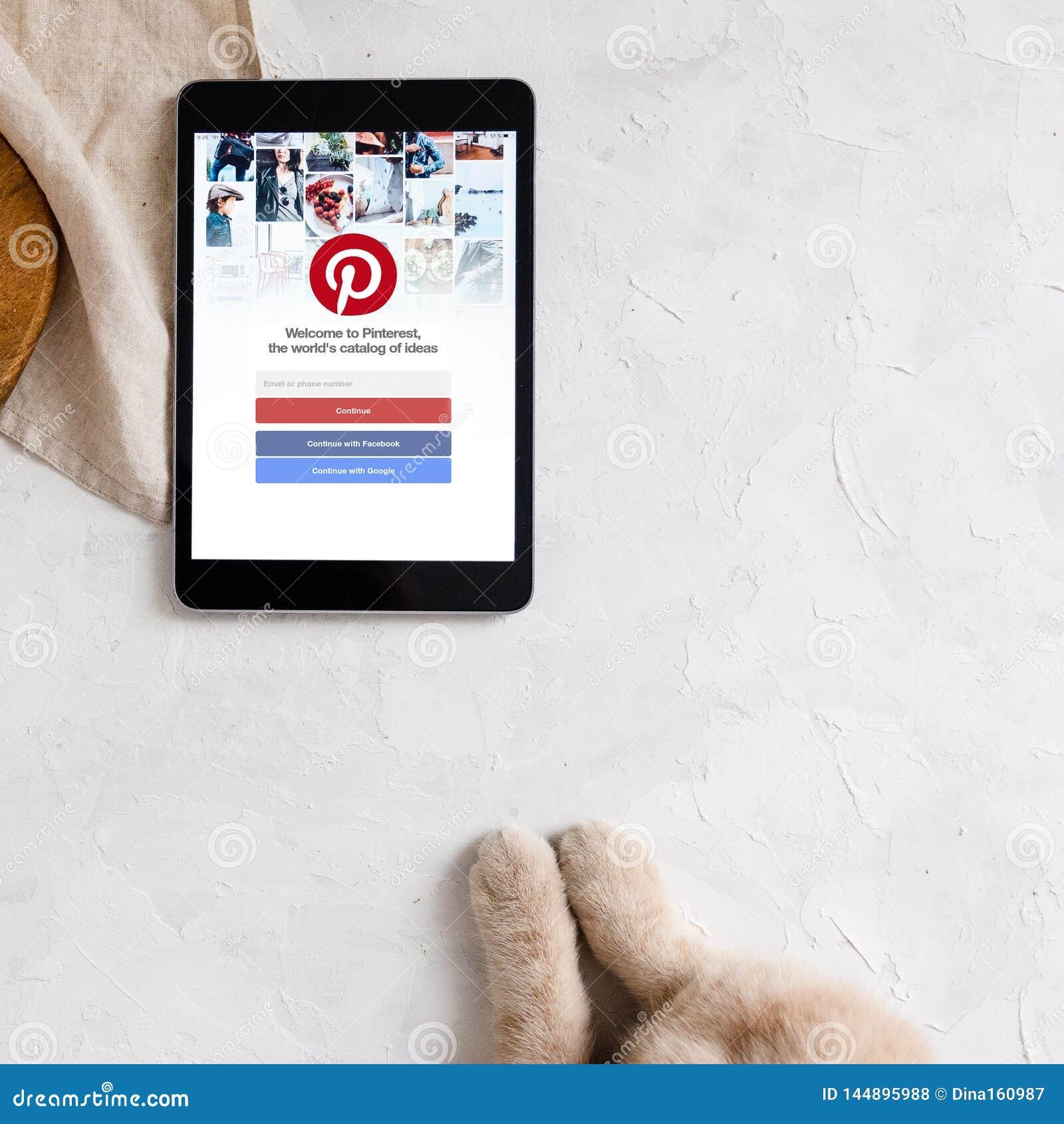 LOS ANGELES, DE V.S. - 12 APRIL, 2019: De sociale Internetservice van Pinterest op het scherm van tablet op witte achtergrond Kat