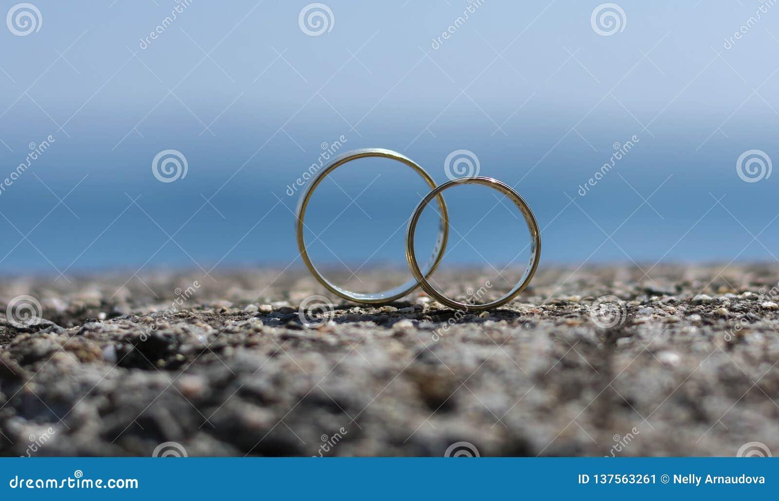 Los anillos de bodas colocaron en una roca