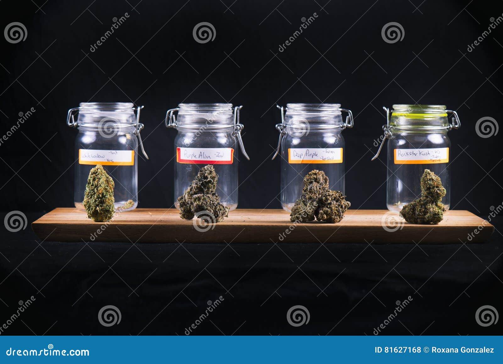 Los cáñamos clasificados florecen las tensiones y los tarros de cristal - marijuana médica