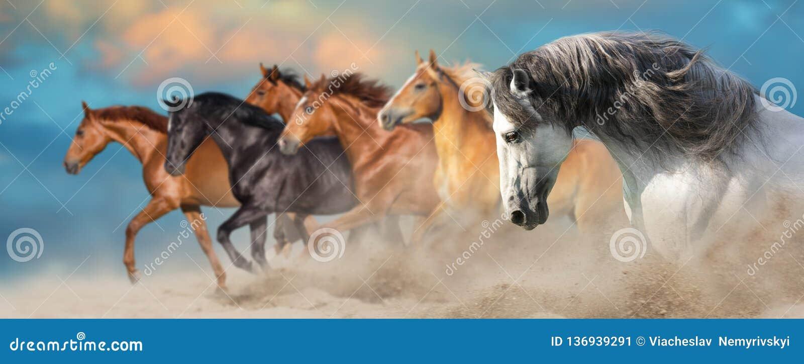 Los caballos se cierran encima del retrato
