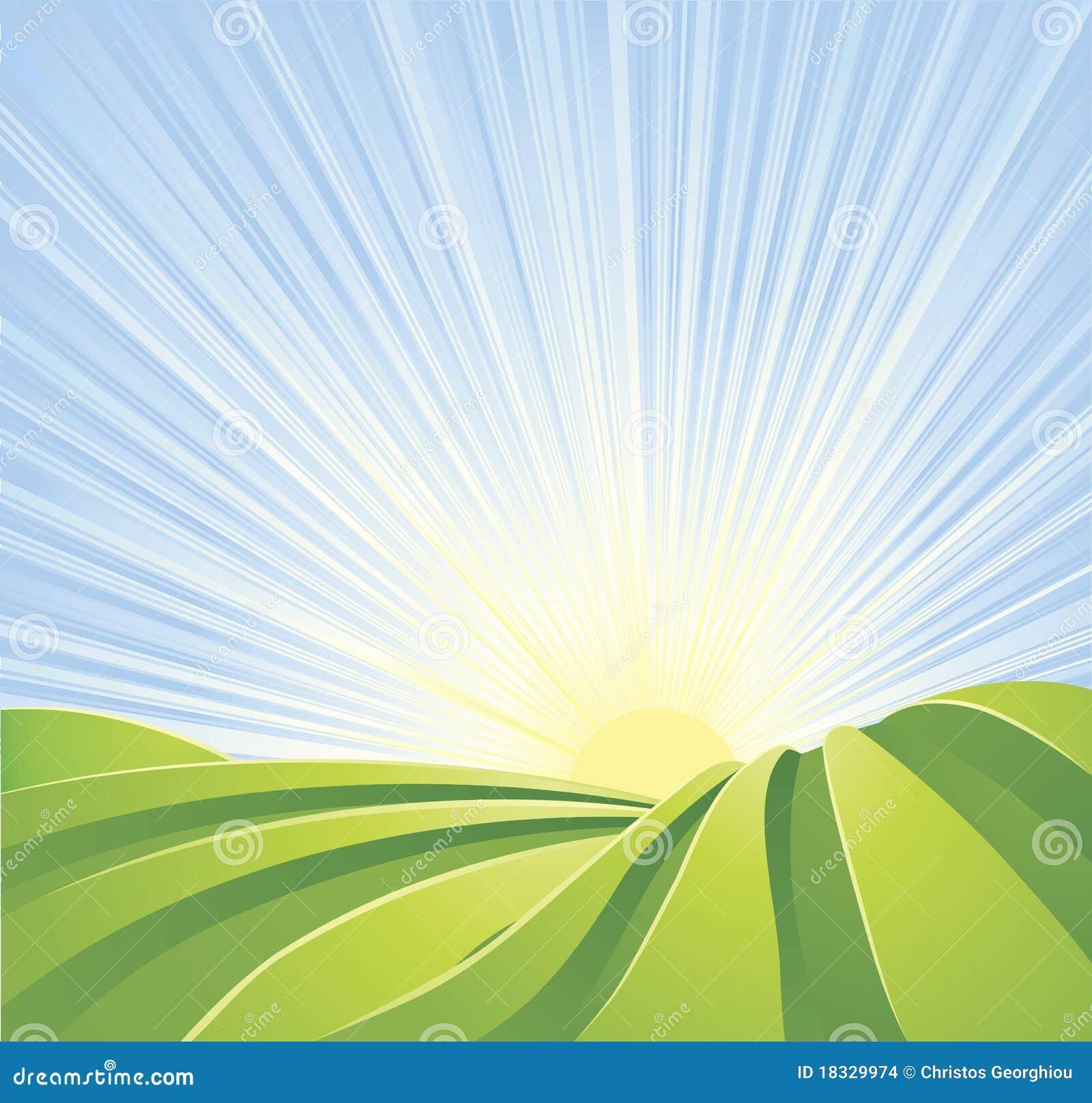 Los campos verdes idílicos con el sol irradian el cielo azul
