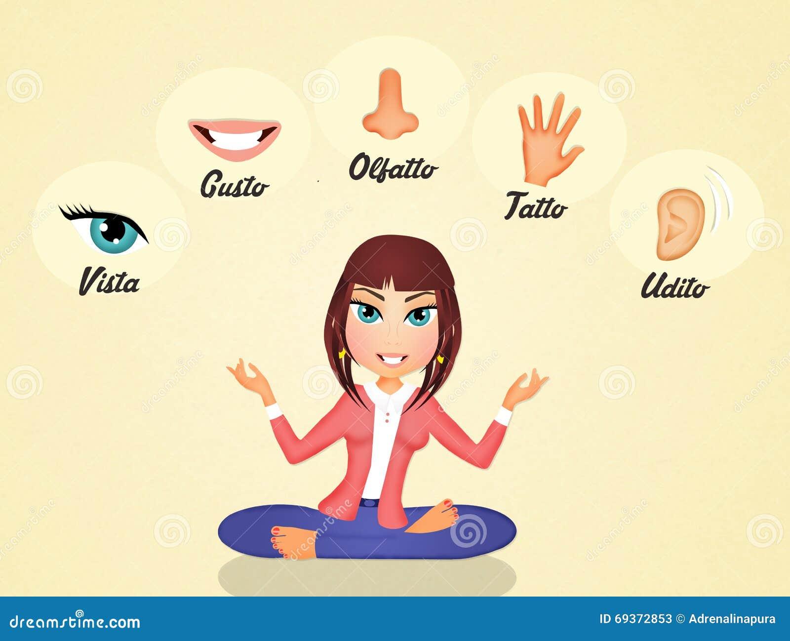 Los cinco sentidos stock de ilustraci n ilustraci n de for Mural de los 5 sentidos