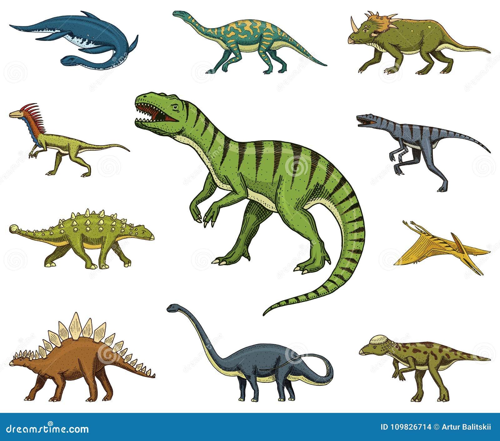 Los dinosaurios fijaron, rex del tiranosaurio, Triceratops, Barosaurus, Diplodocus, Velociraptor, Triceratops, Stegosaurus, esque