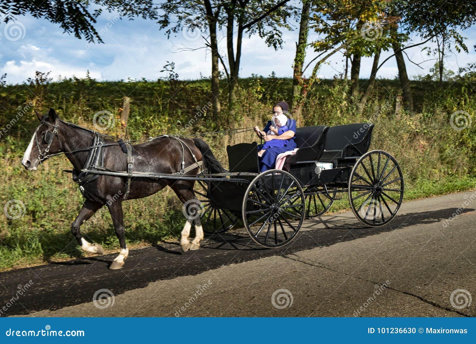 LOS E.E.U.U. - Ohio - Amish
