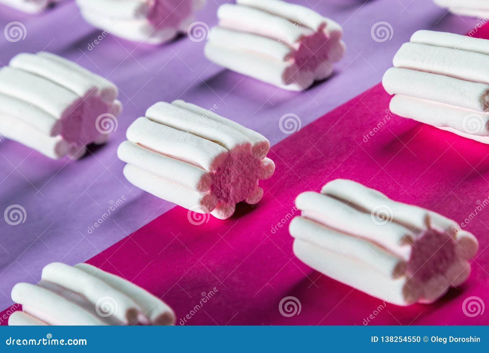 Los Eibische auf einem Flieder-rosa Hintergrund
