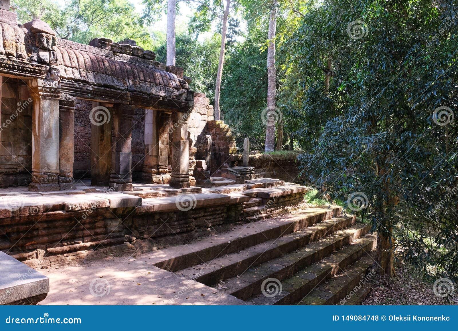 Los ficus crecen en las escaleras de un templo dilapidado antiguo Ruinas antiguas en los pasos de la piedra de la selva tropical