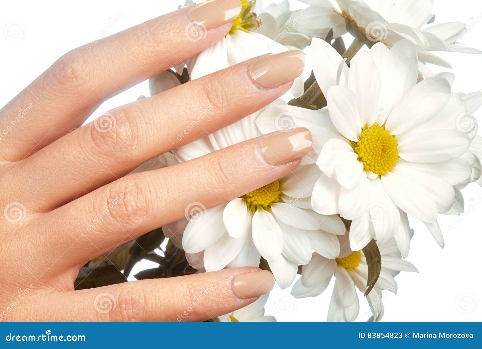 Los fingeres femeninos hermosos con rosa en colores pastel manicure las flores conmovedoras de la primavera Cuide sobre las manos