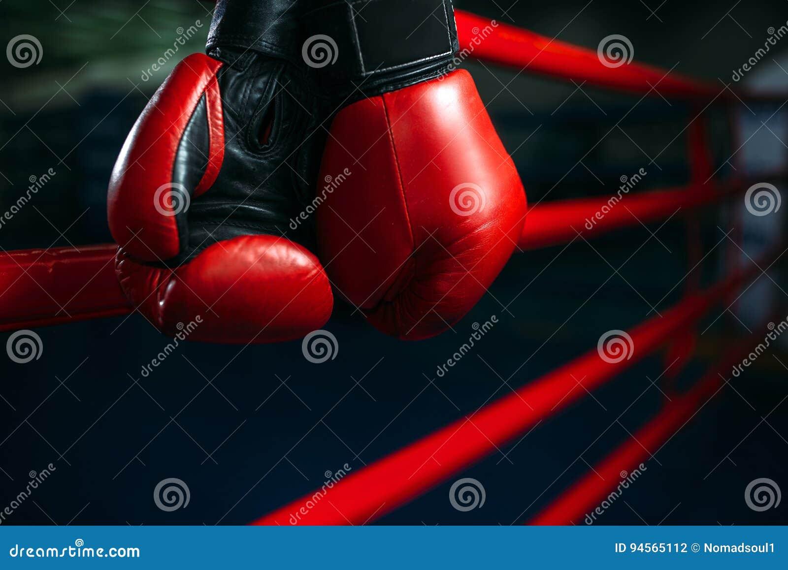 Los guantes en el anillo ropes, encajonando concepto, nadie