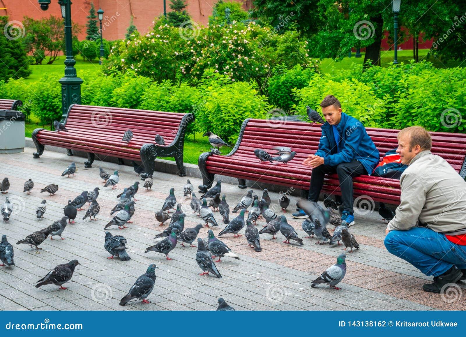 Los hombres alimentan pájaros en el jardín de Alexandrovsky de la Moscú el Kremlin