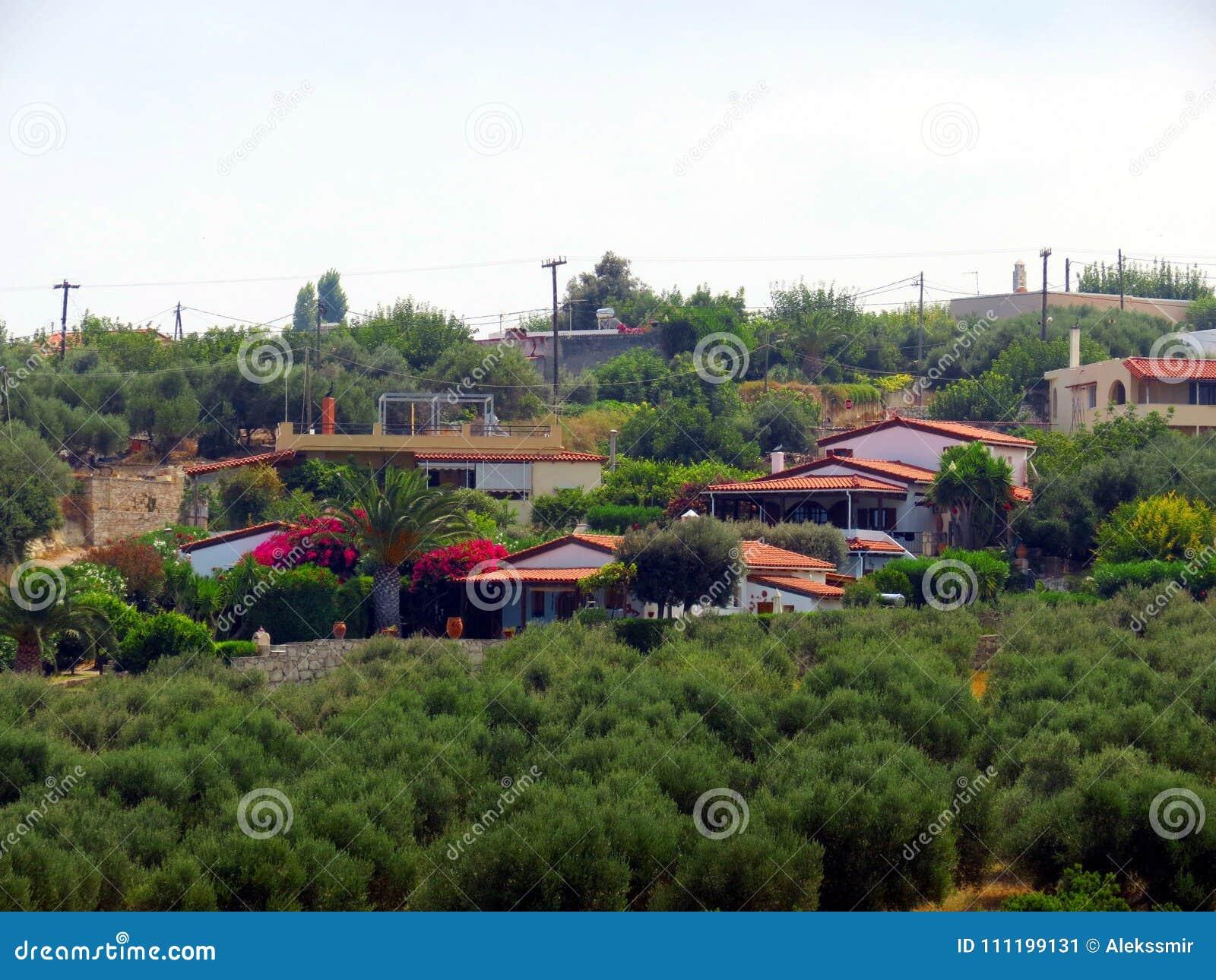 Los jardines verdes olivas magníficos de Creta