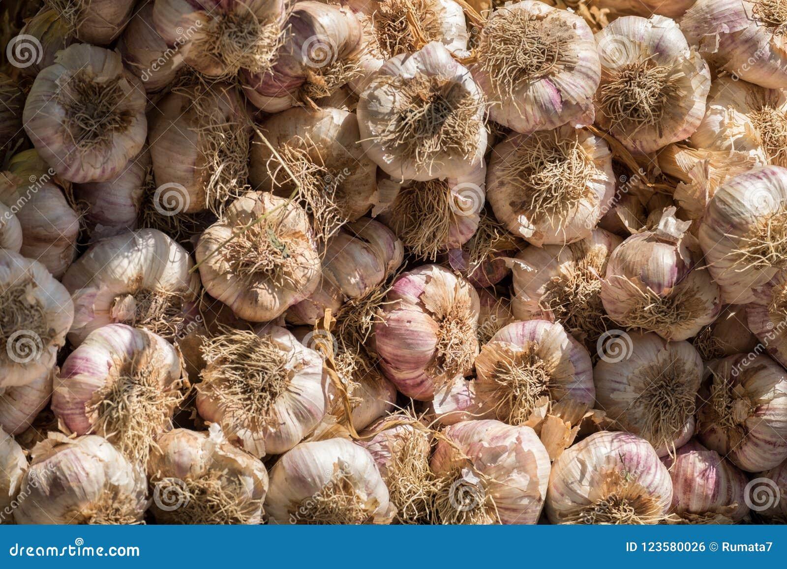Los manojos frescos del ajo vendieron en el mercado local de la ciudad