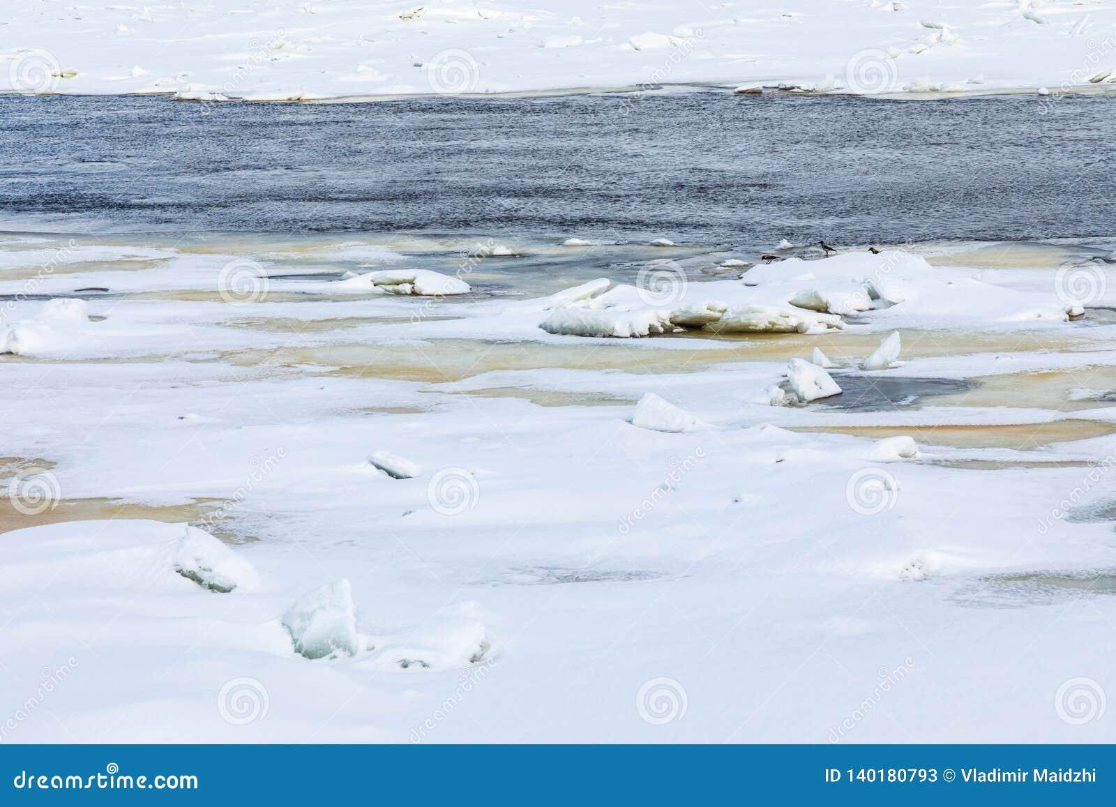 Los morones y las masas de hielo flotante en el río del invierno