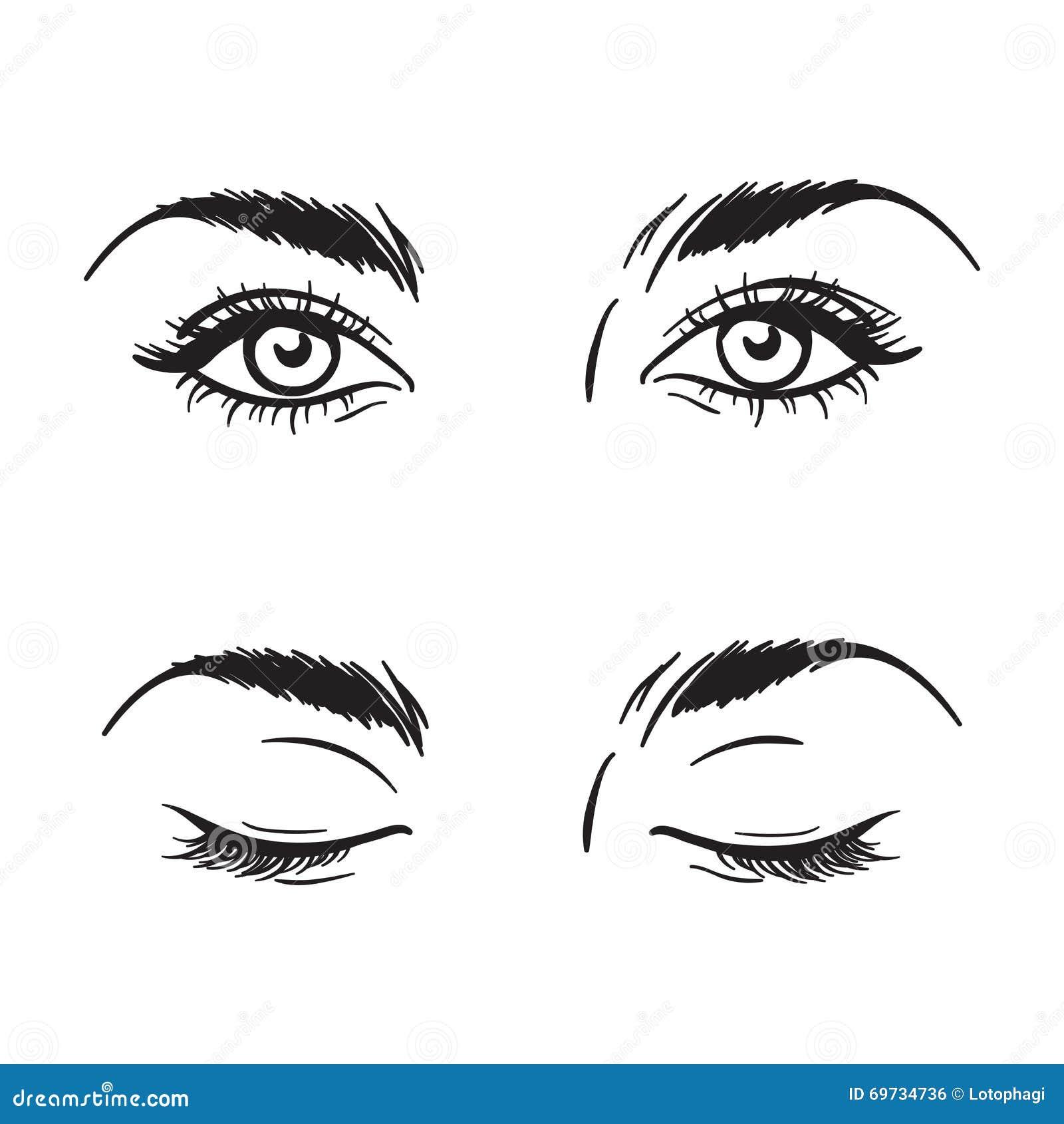 Los Ojos Hermosos Blancos Y Negros Aislados De La Hembra Fijaron El