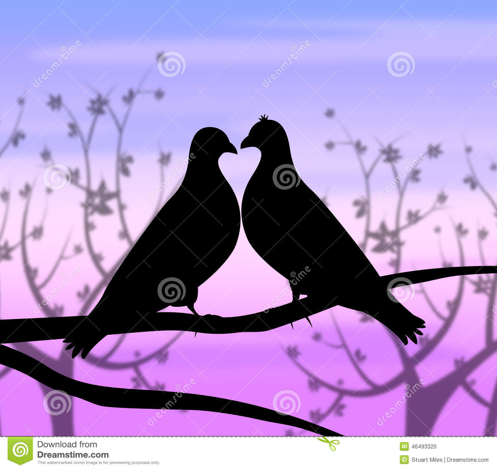 Los Pájaros Del Amor Representan La Pasión Y El Corazón De La