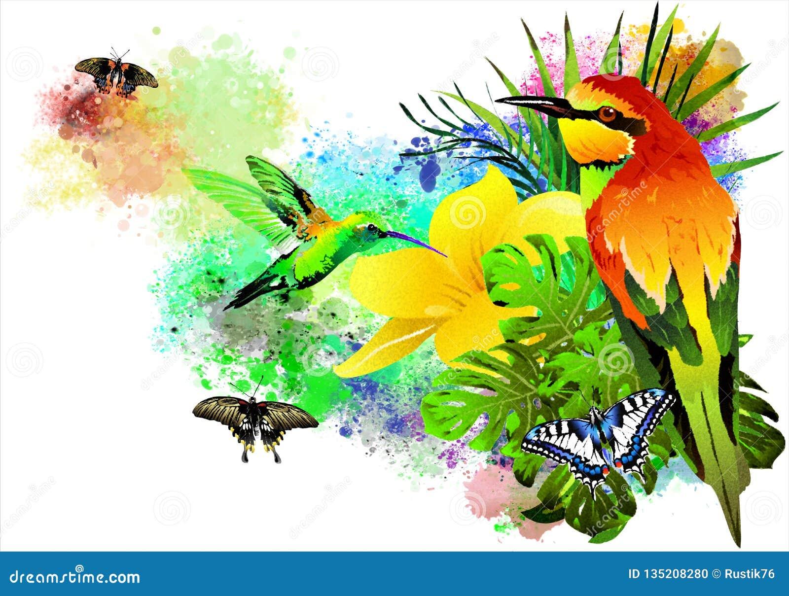 Los pájaros y las mariposas tropicales en la pintura colorida salpican