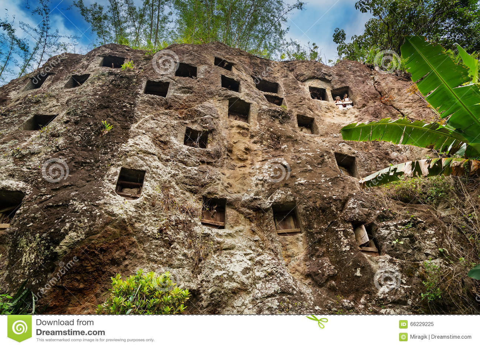 Los sepulcros tradicionales de la cueva tallaron en la roca en Lemo Tana Toraja, Sulawesi del sur, Indonesia