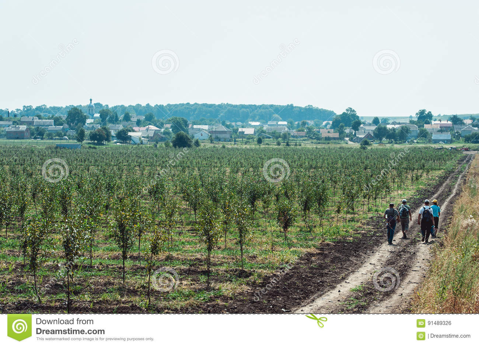 Los trabajadores cansados están en un camino de tierra camino de su casa del manzanar