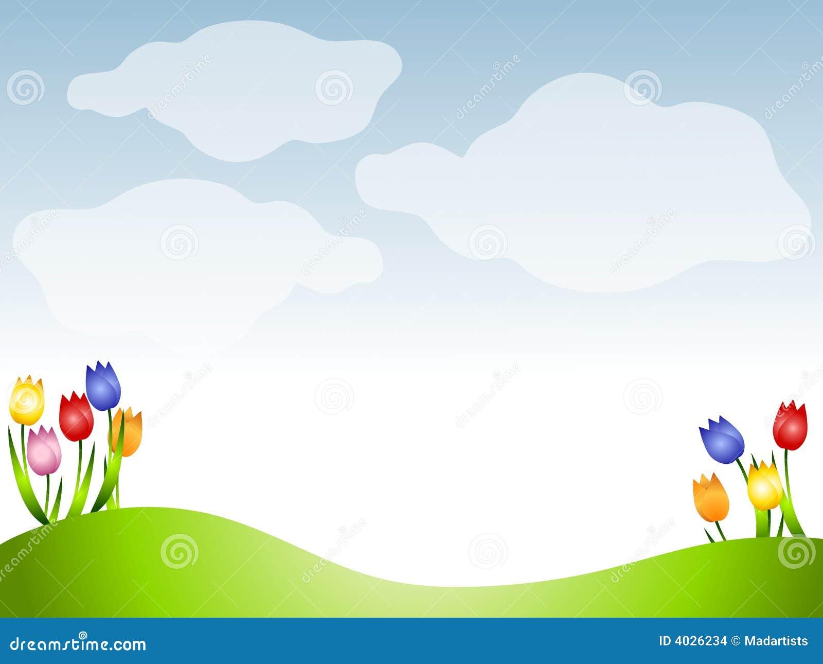 Los tulipanes del resorte se chiban el fondo del prado