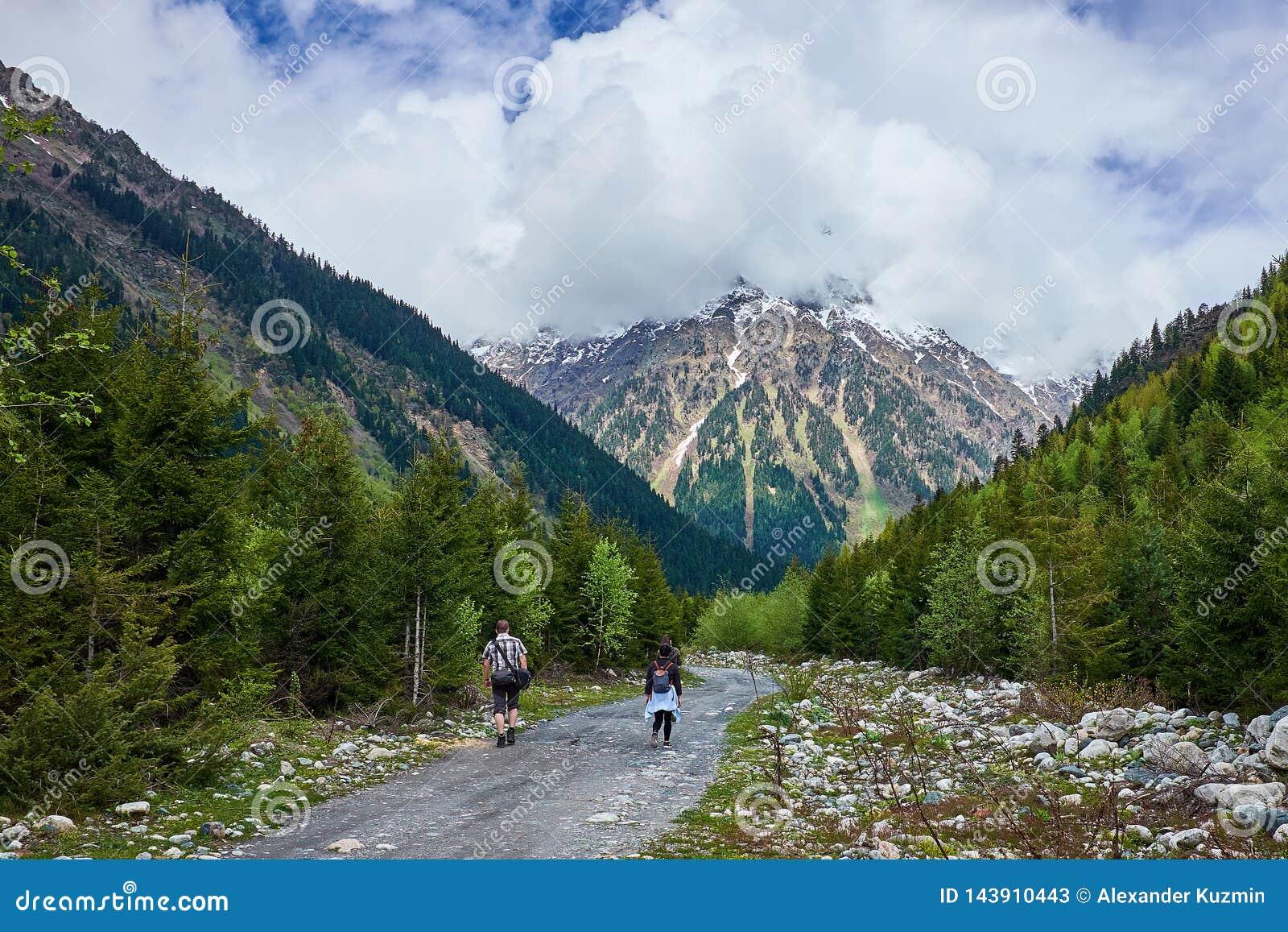 Los turistas van en un camino de la montaña del bosque