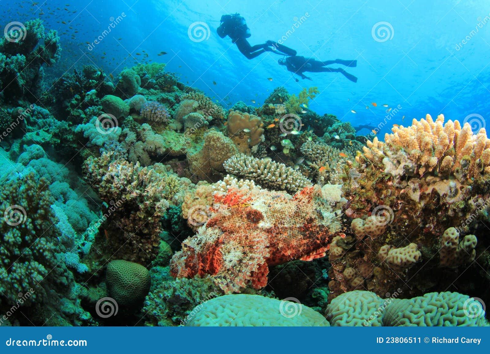 Los zambullidores de equipo de submarinismo exploran el filón coralino hermoso