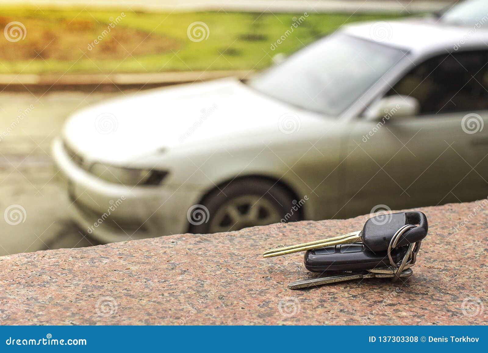 Lost Car Keys On The Fallen Needles Of Blue Spruce  Back
